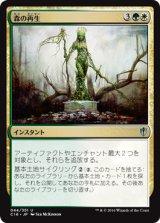 森の再生/Sylvan Reclamation 【日本語版】 [C16-多色U]