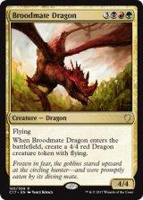 若き群れのドラゴン/Broodmate Dragon 【英語版】 [C17-金R]