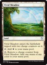 鮮烈な草地/Vivid Meadow 【英語版】 [C17-土地U]