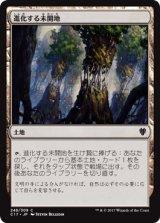 進化する未開地/Evolving Wilds 【日本語版】 [C17-土地C]