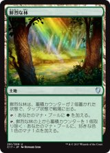 鮮烈な林/Vivid Grove 【日本語版】 [C17-土地U]
