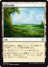 鮮烈な草地/Vivid Meadow 【日本語版】 [C17-土地U]