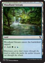 森林地の小川/Woodland Stream 【英語版】  [C18-土地C]