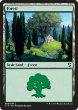森/Forest No.305 【英語版】 [C18-土地C]