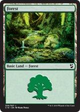 森/Forest No.306 【英語版】 [C18-土地C]