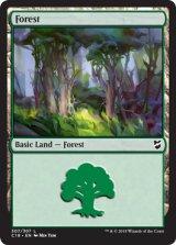 森/Forest No.307 【英語版】 [C18-土地C]