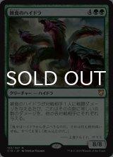 雑食のハイドラ/Hydra Omnivore 【日本語版】 [C18-緑MR]《状態:NM》