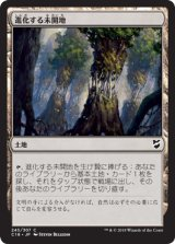 進化する未開地/Evolving Wilds 【日本語版】 [C18-土地C]《状態:NM》