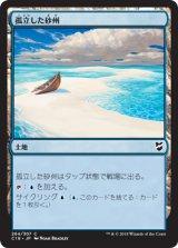 孤立した砂州/Lonely Sandbar 【日本語版】 [C18-土地C]