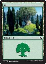 森/Forest No.305 【日本語版】 [C18-土地C]