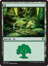 森/Forest No.306 【日本語版】 [C18-土地C]