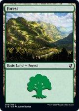 森/Forest No.300 【英語版】 [C19-土地C]《状態:NM》