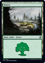 森/Forest No.301 【英語版】 [C19-土地C]