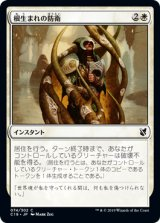 根生まれの防衛/Rootborn Defenses 【日本語版】 [C19-白C]《状態:NM》