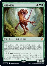死霧の猛禽/Deathmist Raptor 【日本語版】 [C19-緑MR]