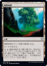 無限地帯/Myriad Landscape 【日本語版】 [C19-土地U]