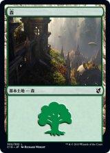 森/Forest No.302 【日本語版】 [C19-土地C]《状態:NM》