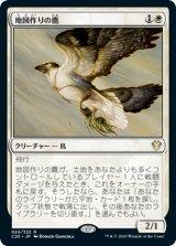 地図作りの鷹/Cartographer's Hawk 【日本語版】 [C20-白R]