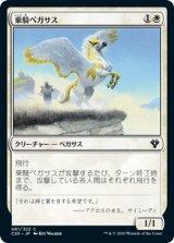 乗騎ペガサス/Cavalry Pegasus 【日本語版】 [C20-白C]