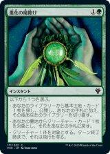進化の魔除け/Evolution Charm 【日本語版】 [C20-緑C]
