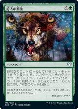 狩人の眼識/Hunter's Insight 【日本語版】 [C20-緑U]《状態:NM》