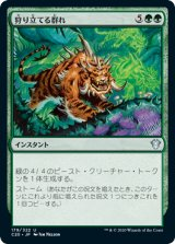 狩り立てる群れ/Hunting Pack 【日本語版】 [C20-緑U]