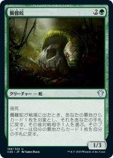 髑髏蛇/Skullwinder 【日本語版】 [C20-緑U]《状態:NM》
