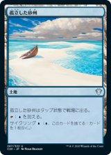 孤立した砂州/Lonely Sandbar 【日本語版】 [C20-土地U]《状態:NM》
