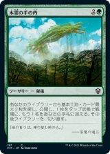 木霊の手の内/Kodama's Reach 【日本語版】 [C21-緑C]