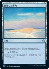 孤立した砂州/Lonely Sandbar 【日本語版】 [C21-土地U]
