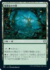 樹液染みの森/Sapseep Forest 【日本語版】 [C21-土地U]
