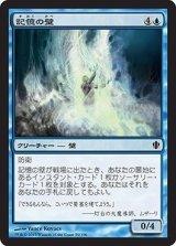 記憶の壁/Mnemonic Wall 【日本語版】 [C13-青C]