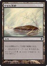 やせた原野/Barren Moor 【日本語版】 [C13-土地C]