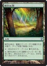 鮮烈な林/Vivid Grove 【日本語版】 [C13-土地U]