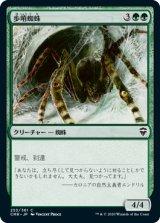 歩哨蜘蛛/Sentinel Spider 【日本語版】 [CMR-緑C]