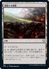浸食する荒原/Encroaching Wastes 【日本語版】 [CMR-土地U]