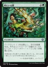 内にいる獣/Beast Within 【日本語版】 [CN2-緑U]