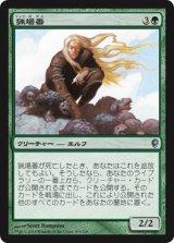 猟場番/Gamekeeper 【日本語版】 [CNS-緑U]