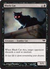 黒猫/Black Cat 【英語版】 [DKA-黒C]