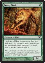 若き狼/Young Wolf 【英語版】 [DKA-緑C]