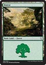 森/Forest No.268 【英語版】 [DOM-土地C]《状態:NM》