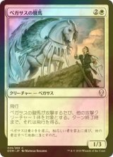 [FOIL] ペガサスの駿馬/Pegasus Courser 【日本語版】 [DOM-白C]