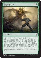 古えの憎しみ/Ancient Animus 【日本語版】  [DOM-緑C]《状態:NM》