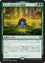 カマールのドルイド的誓約/Kamahl's Druidic Vow 【日本語版】 [DOM-緑R]《状態:NM》
