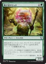 胞子冠サリッド/Sporecrown Thallid 【日本語版】  [DOM-緑U]《状態:NM》