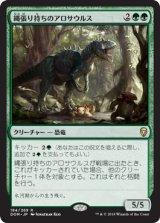 縄張り持ちのアロサウルス/Territorial Allosaurus 【日本語版】 [DOM-緑R]《状態:NM》