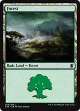 森/Forest No.263【英語版】 [DTK-土地]《状態:NM》