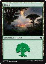 森/Forest No.264【英語版】 [DTK-土地]