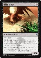 吐酸ドラゴン/Acid-Spewer Dragon 【日本語版】 [DTK-黒U]《状態:NM》