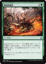 爆発的植生/Explosive Vegetation 【日本語版】 [DTK-緑U]《状態:NM》